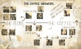The Coffee Growers